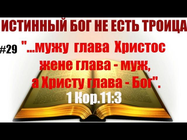 29 ...мужу глава Христос, жене глава-муж, Христу глава Бог. 1Кор.113.