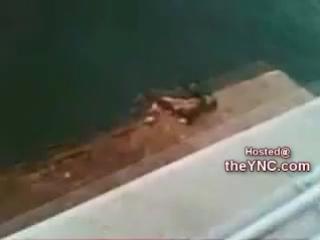 Парень прыгнул с моста и разбил лицо на две части!