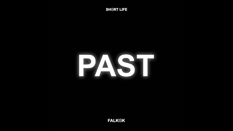 Falkok - Past