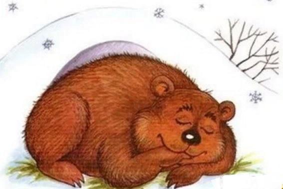 картинка мишка спит в берлоге зимой жизнь башни