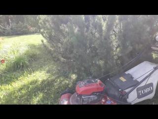 Уход за газонами