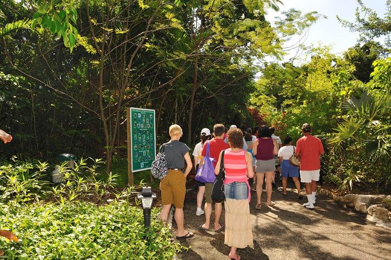 Парк Garden of the Groves, изображение №2