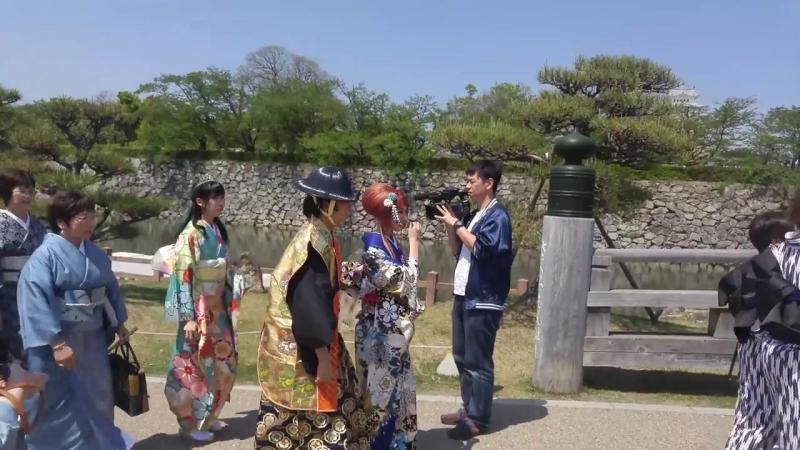 Japan travel Osaka Kyoto gobe nara Tokyo