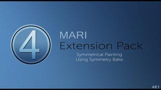 Mari Extension Pack 4: Symmetrical Painting using Symmetry Bake