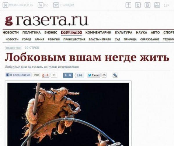 ПОСТ КОНСТРУКТОР, изображение №3