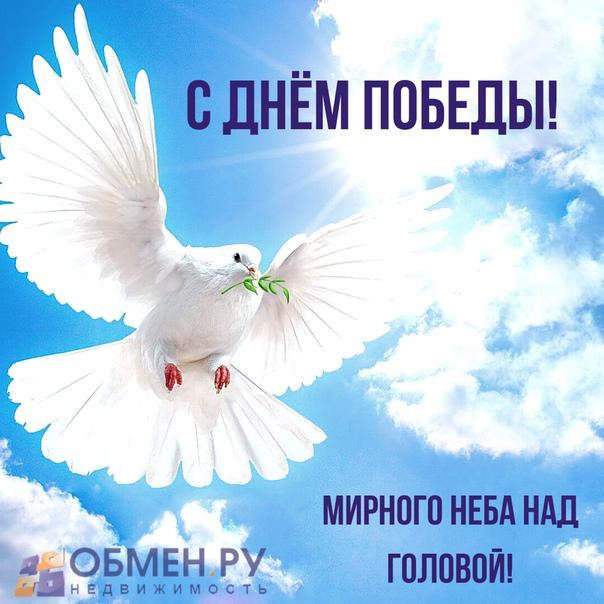 мирного неба поздравление