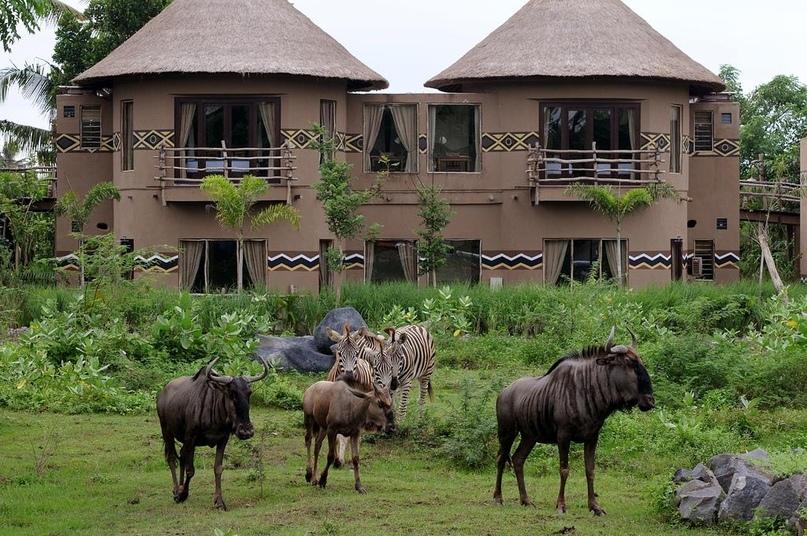 Лучшие отели мира от Soul Travel Mara River Safari Lodge Bali (Индонезия), изображение №1