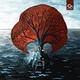 Philanthrope x Dayle  -  Ocean Patio