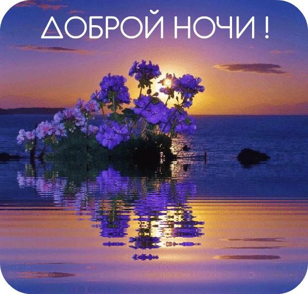 Благословенной ночи картинки