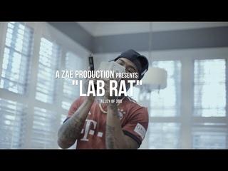 Talley Of 300 — Lab Rat