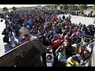 First Wave Of Migrant Caravan Met With Barbed Wire & Border Patrol (Full Compilation)