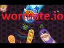 Wormate.io 104   Trò chơi rắn săn mồi   Game rắn săn mồi