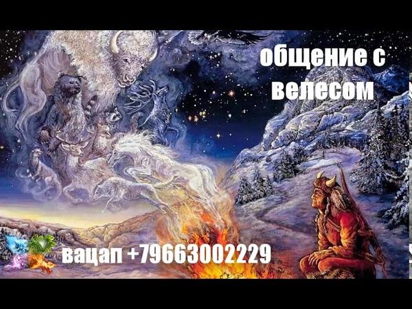 264. общение с Богом Велесом. Славянские Боги всегда рядом с людьми, примите их.