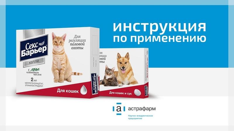 Капли и таблетки Секс Барьер для кошек Инструкция по применению