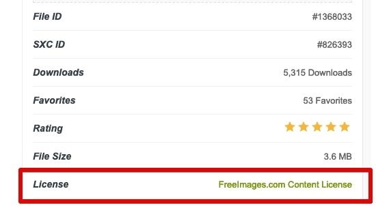 Где найти бесплатные изображения?, изображение №11