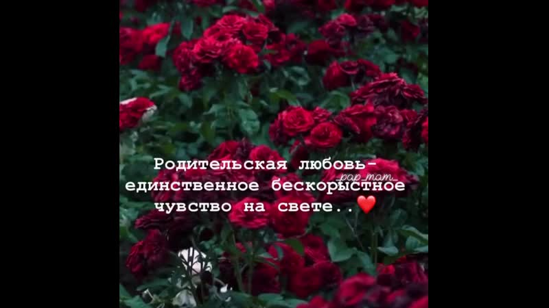 _pap_mam_B34QoZ4nw0C.mp4