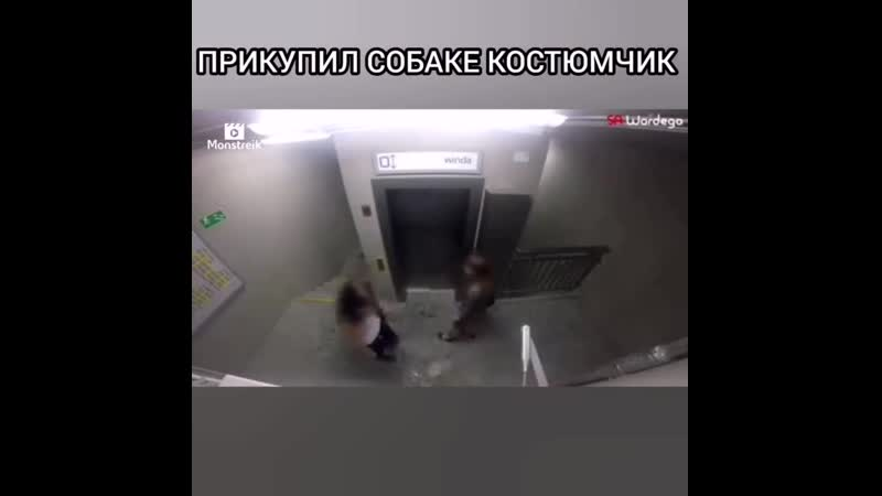 VIDEO 2019 10 18 22 29