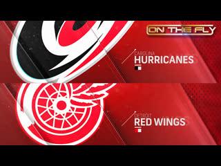 Hurricanes - Red Wings 11/24/19
