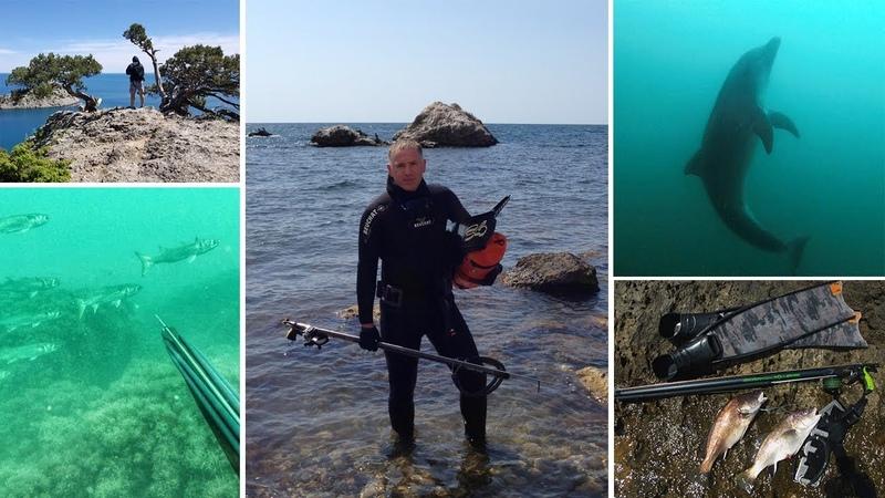 Александр Сальник (АС): про Крым, глубокую охоту и встречи с дельфинами