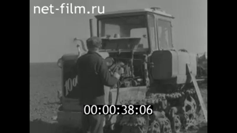 1978г совхоз Рокотино Калачёвский район Волгоградская обл
