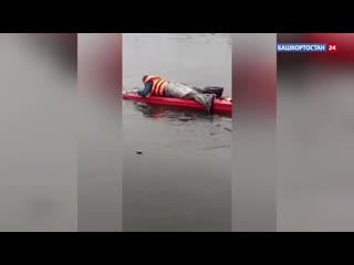 В Салавате спасли собаку, оказавшуюся на середине городского пруда_ видео (1)