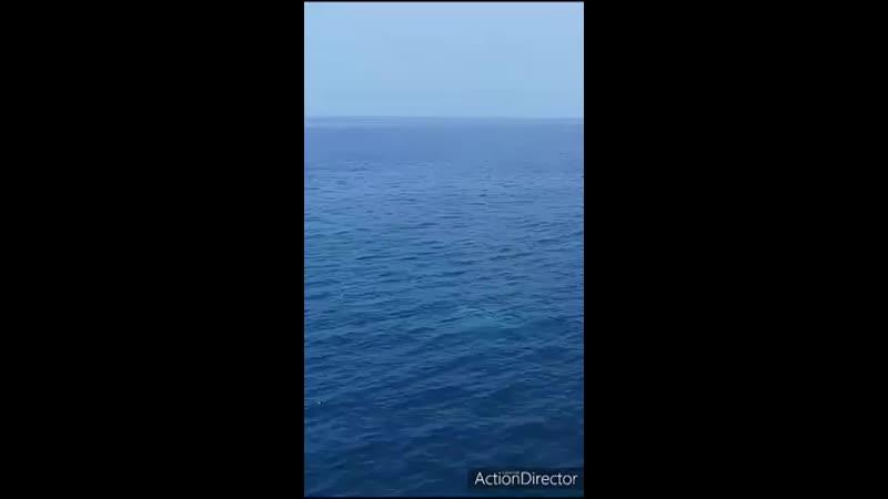 Video-5330e58fd5e20bee5c3abea1e239e94b-V.mp4