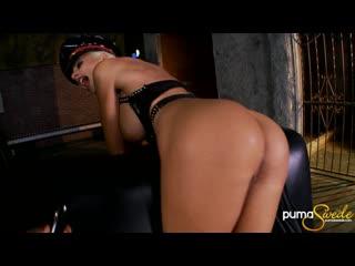 Puma Swede, Sandy