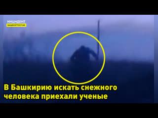 В Башкирию приехали ученые чтобы найти снежного человека