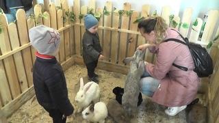 """Интерактивная выставка животных """"Деревенька"""" открыта в музее Белорусского Полесья"""