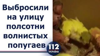 Попугаи на морозе. В Харькове неизвестные выбросили на улицу около полусотни больных птиц