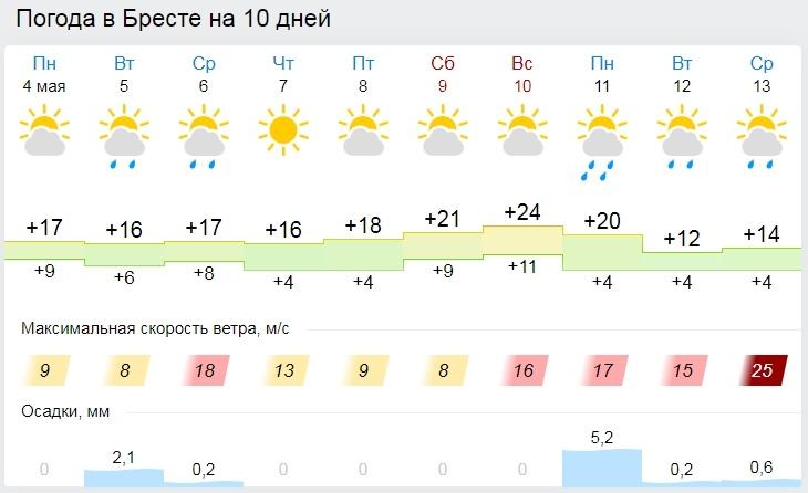 Теплая дождливая погода ожидается в Беларуси на этой неделе