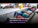 Аукцион забытых чемоданов во Внуково