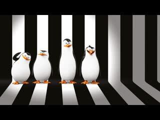 """Смотрим """"Пингвины Мадагаскара (2014)"""" Movie Live"""