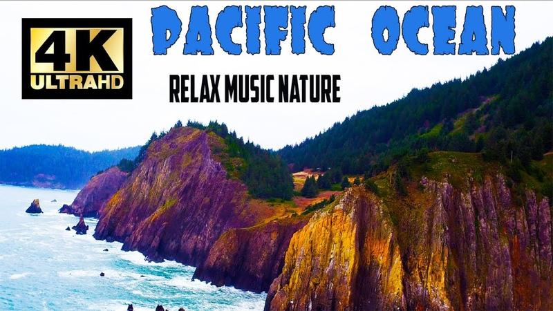 Nature США Relax Flying DRONE 4K Тихий Океан в Америке АЛЕКС БРЕЖНЕВ природа в США
