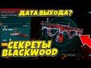 СЕКРЕТЫ НОВОГО DLC BLACKWOOD WARFACE Дата выхода ДЛС Блеквуд Варфейс Блэквуд