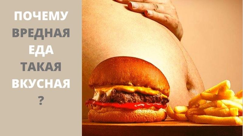 Почему вредная еда такая вкусная