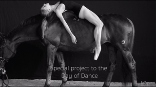 The Day of Dance – Emotion. Body. Perfection. Motion.