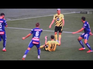 Borussia Dortmund - Austria Wien 11:2, Alle Tore und Highlights -