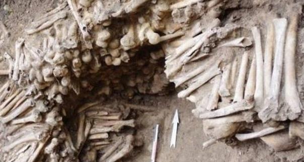 Под бельгийским собором обнаружили «стену из костей»