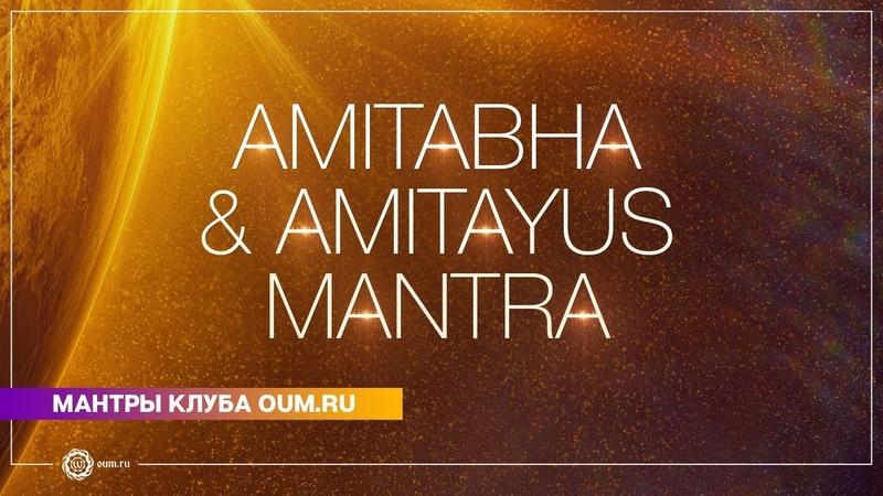Amitabha Amitayus mantra Daria Chudina