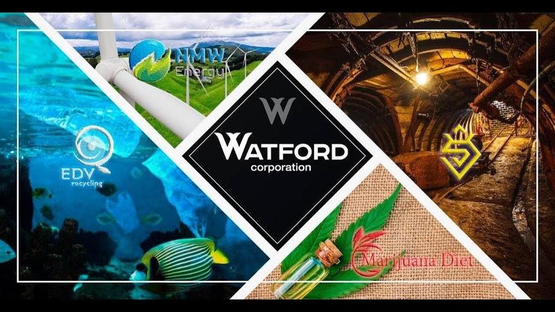Watford LLC стабильный бессрочный доход
