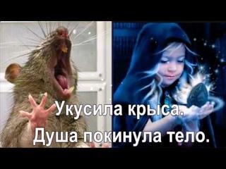 Крыса укусила за пальчик. Душа выскочила из тела.