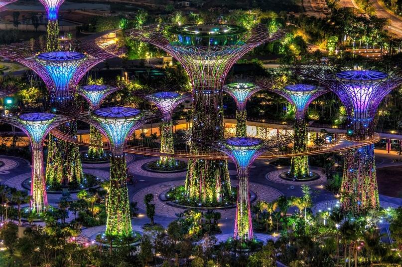 Парки с искусственными и настоящими растениями — визитная карточка Сингапура