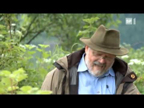 Sepp Holzer mit Permakultur in die Unabhängigkeit