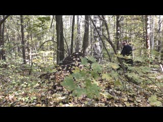 Доктор шклов - по грибы 2. боровецкий лес (x-ray dog – fight for glory)
