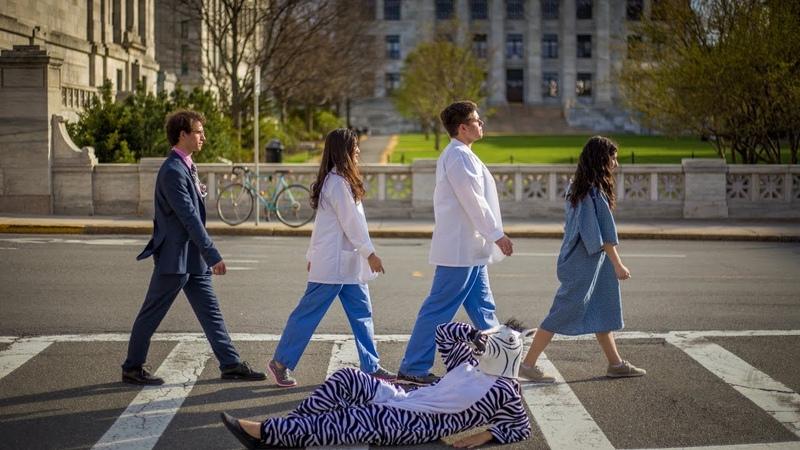 IT'S NOT A ZEBRA ft Harvard Medical School HSDM CAN'T STOP THE FEELING Parody