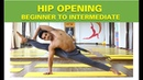 Hip Opening Yoga Beginner to Intermediate Level Techniques to Open Hip Joint Raja Gupta