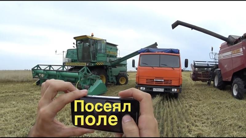Как комбайнер рассыпал зерно на 50 ТЫСЯЧ Молотим пшеницу