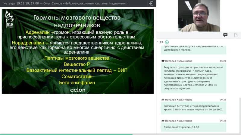 19 12 19 Олег Стулов Нейро эндокринная система Надпочечники часть 2 Ответы