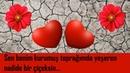 Kurumuş Toprağımda Yeşeren Nadide Bir Çiçeksin / Sevgiliye Romantik Sözler